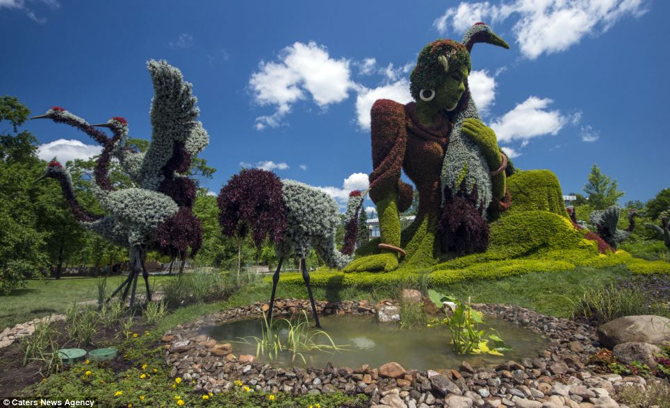 The elaborate sculptures see horticulturalists letting their imaginations run wild, including rock pools and colour as well as creating the shape of creatures and people