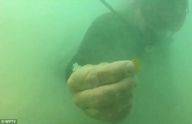 Jackpot: Bounds mid-dive shows off one of the gold coins, worth $4,000 each