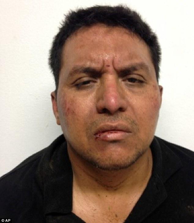 Captured: This mug shot released by Mexico's Interior Ministry on shows Zetas drug cartel leader Miguel Angel Trevino Morales after his arrest