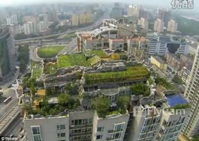 Top of the world: Build on a 26-storey building, the rock-garden villa also has a pool and jaw-dropping gardens