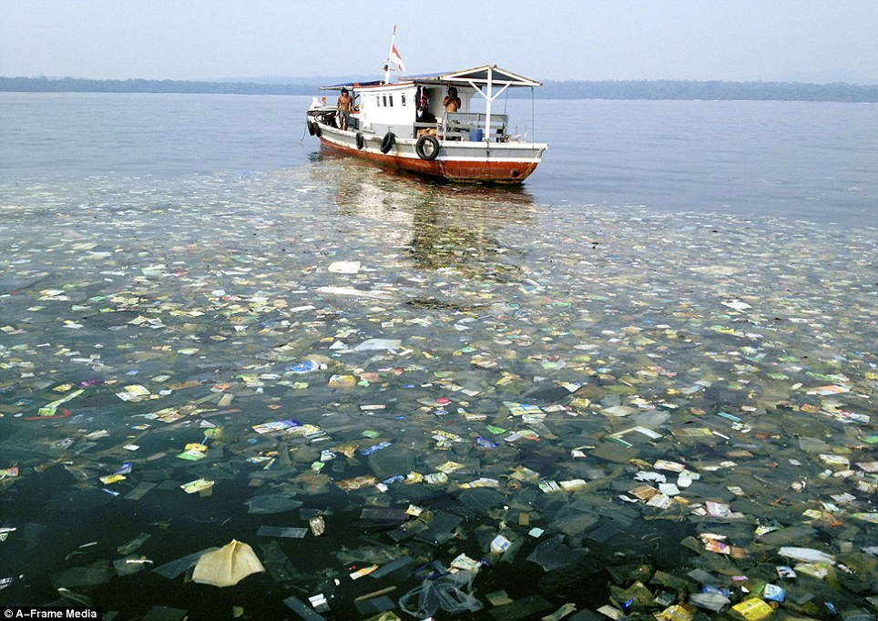 Mess: Despite its natural beauty, Indonesia is well known for its rubbish filled water. This shows a huge trash slick off of the coast of Java