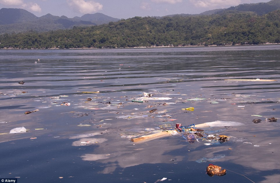 Mess: Dede Suryana has previously spoken about pollution in the ocean's surrounding Indonesia