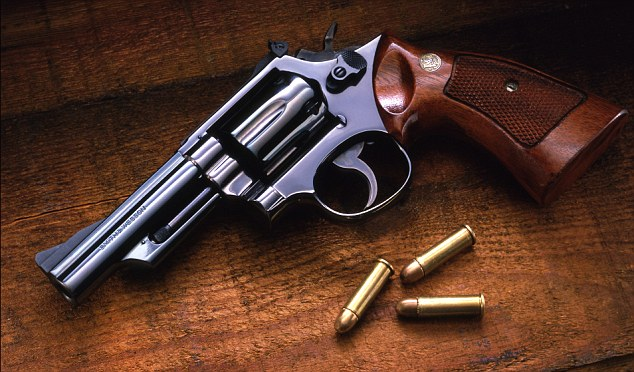 This is a Colt .38-caliber Detective Special revolver - like the gun detectives believe an eight-year-old boy used to kill his elderly caregiver