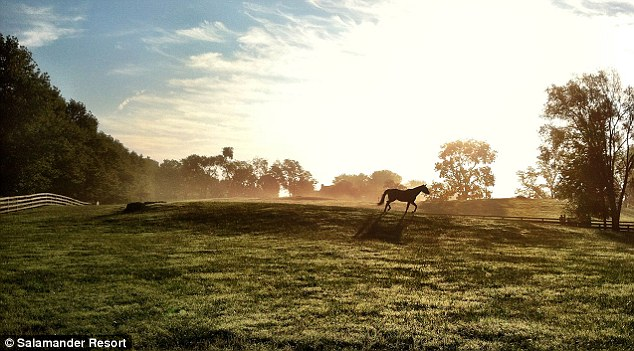 Giddy up: A short distance from the resort are miles of trails where riders can bring their own horses