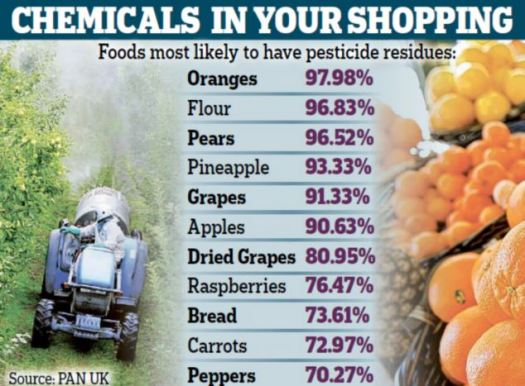 Chemicals in your shopping