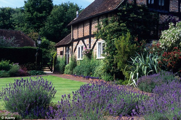 Lavender Hidcote lines the path of this home in Sussex