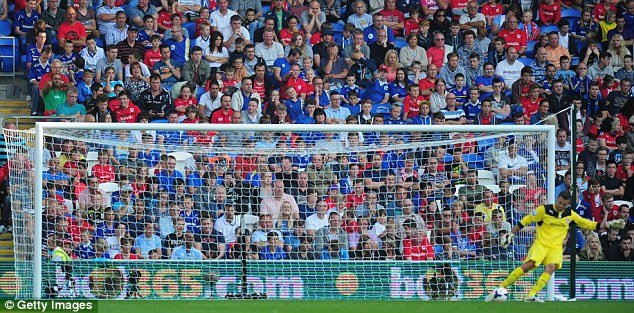 Red and Blue Cardiff City Supporters