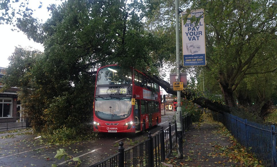 Crush: A tree fell on a bus on Turnpike Lane in north London. Police closed the road