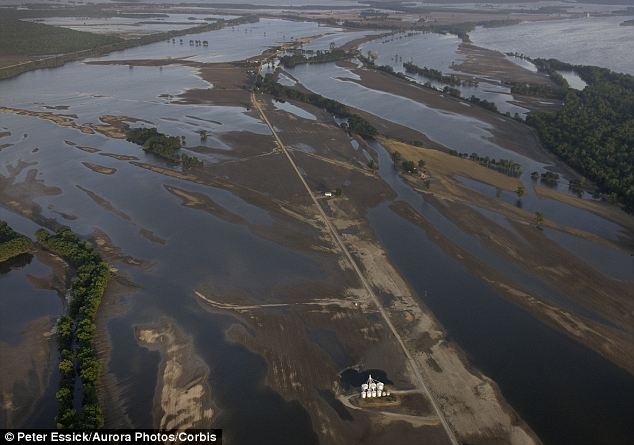 Flood: Inundated farmland next to the Mississippi River in Tennessee