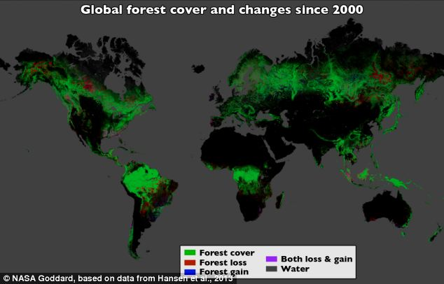 Using Landsat imagery and cloud computing, researchers mapped forest cover worldwide as well as forest loss and gain. Over 12 years, 888,000 square miles (2.3 million square kilometers) of forest were lost, and 309,000 square miles (800,000 square kilometers) regrew