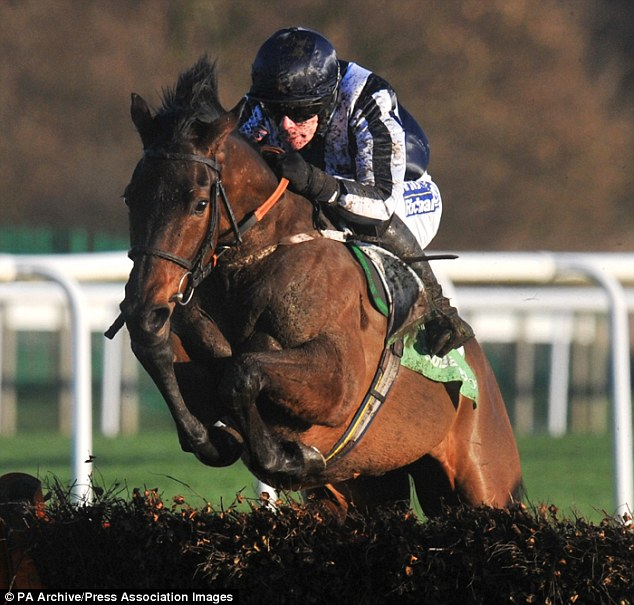 Fighting spirit: Countrywide Flame on his way to winning the Grade One Fighting Fifth Hurdle at Newcastle in 2012
