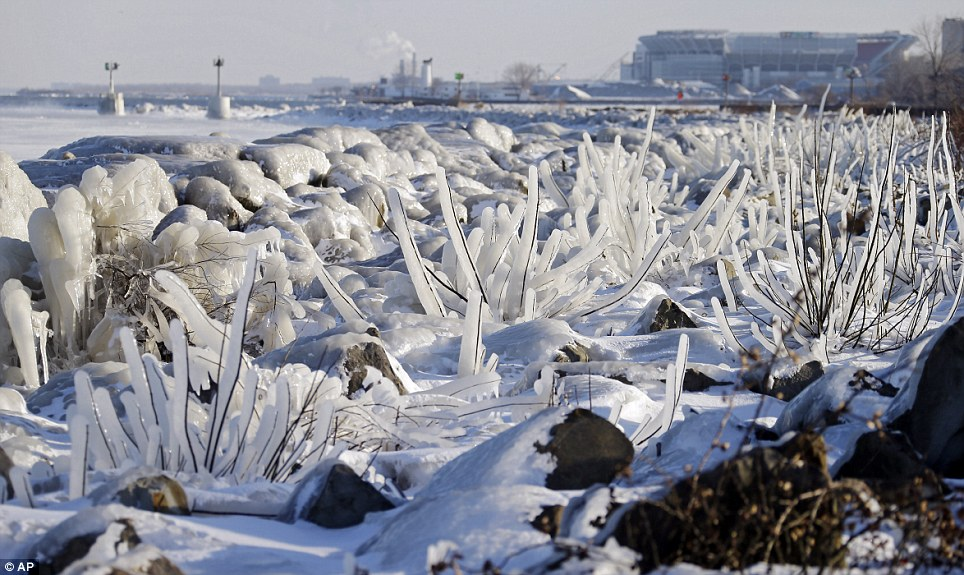 Ice covers rocks and brush on the break wall at Edgewater Park in Cleveland, Ohio as half the U.S. was battered by winter storm Ion