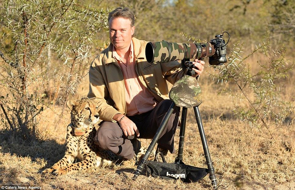 Amistoso: A pesar lado salvaje del gran felino, que por suerte no tiene apetito por el Sr. Du Plessis