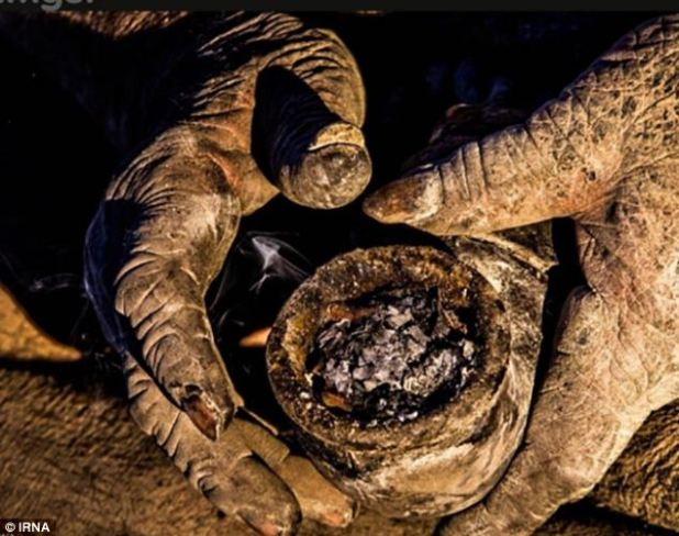 Buen aroma: la pipa que fuma del señor Haji está llena de heces de animales en lugar de tabaco