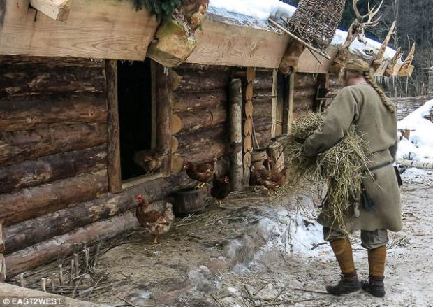 Sapozhnikov's farm is situated in a forest clearing around 50 miles north of Moscow. It features pens for chickens, pictured, as well as goats. Chickens are used for eggs and meat, while the goats are used for milk