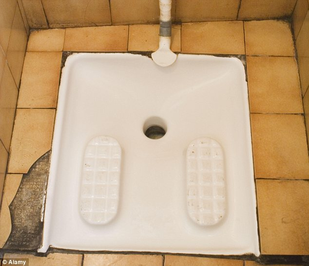 Continental: A squat toilet has been installed in a DHL warehouse in Swindon (file photo)