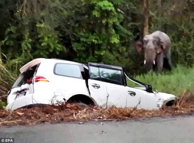 Car Crash Yesterday News Scotland