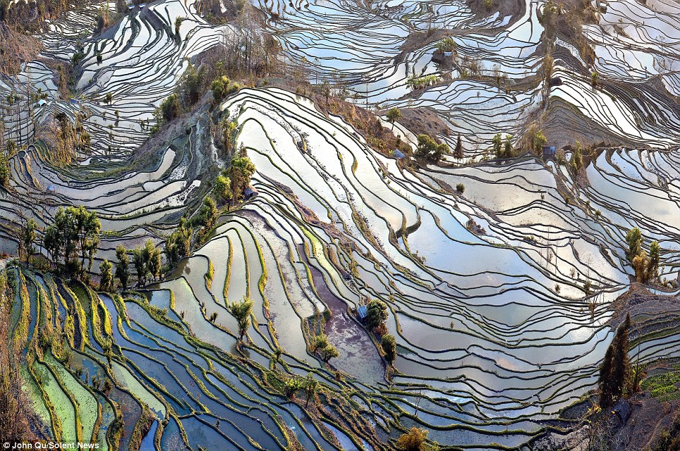 What looks like a random arrangement of water pools is actually planned as they follow the hill's contours depending on where people can reach