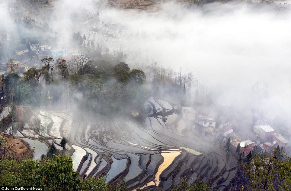 Misty morning: Meticulously built up the steep hillside by several generations of families, the rice paddies cover an area of about 850 square miles