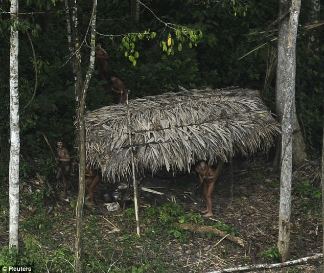 Who's there? The tribe numbers about 200 and is left alone to live in peace by the Brazilian Government