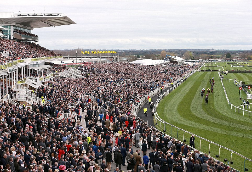 Packed: An aerial view of the crowded stands at Aintree taken as the throng of racegoers cheer on their runners in the Top Novices Hurdle