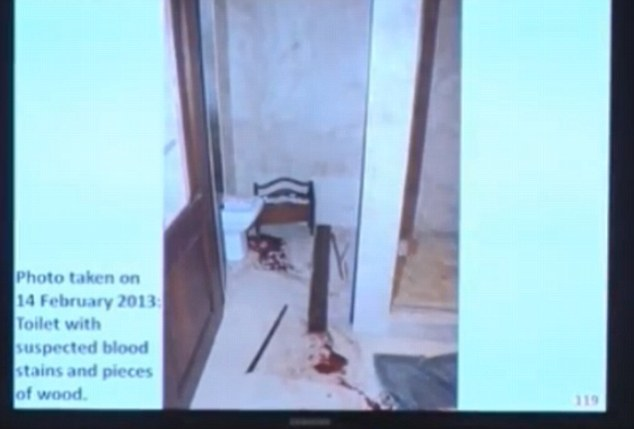 Grim: A police photograph showing the blood-covered toilet cubicle where Miss Steenkamp was displayed in court as prosecutor Gerrie Nel questioned Pistorius's account of the moments after he shot the model