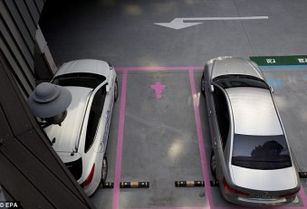 Lady parking: Seoul has created special women-only parking spots, pictured, to make the South Korean capital more female-friendly - not, apparently, as a statement on the gender's driving ability