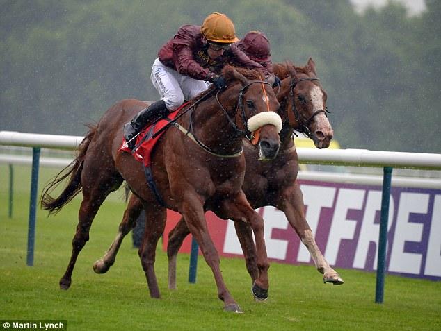 Image result for hot streak horse