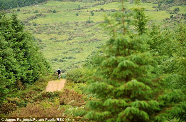Scenes: The ride is thought to be challenging and covers three counties Cork, Limerick, Tipperary