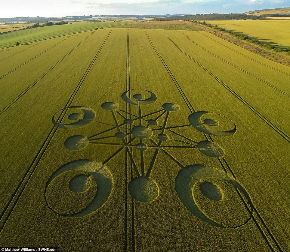 Mysterious: The first crop circle of the year has appeared in a field near Blandford Forum in Dorset sparking interest in who or what has created it