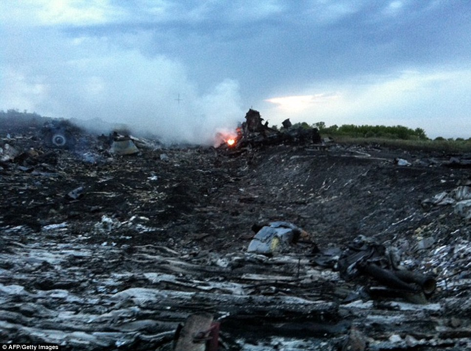Catastrophe: Fire and smoke rises from the wreckage. Ukraine President Petro Poroshenko denied his forces were involved in shooting down the plane