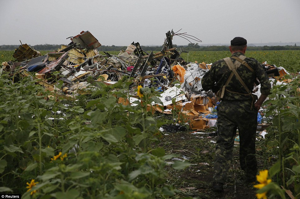 Decimated: A pro-Russian separatist looks at wreckage from the nose section of a Malaysia Airlines Boeing 777 plane which was downed near the village of Rozsypne