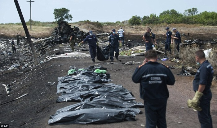 Hauling: Workers are pictured yesterday at the crash site plucking and bagging up remains of victims