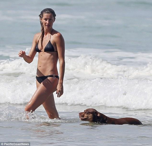 De quatro pá: cão de Gisele nadou ao lado dela quando ela fez seu caminho para fora da água