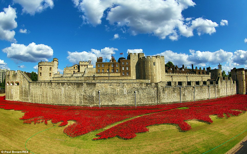 Stupendous: The tribute at the Tower of London, with each poppy representing a British or Colonial serviceman who died in World War I