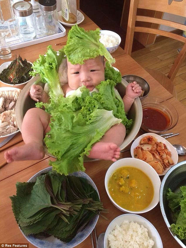 Lettuce out! A Chinese family created a new spin on baby leaf salad for these hilarious photographs