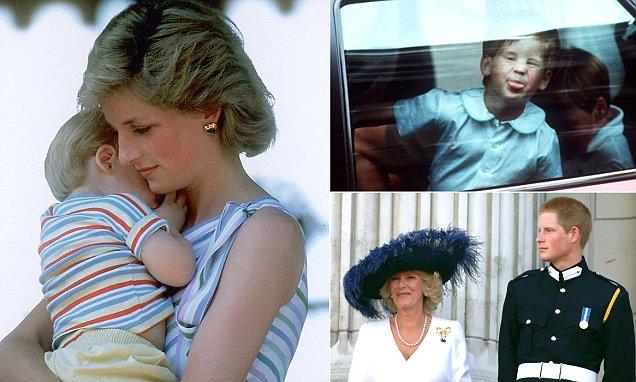 Princess Diana Told Camilla I Sent Someone To Kill You