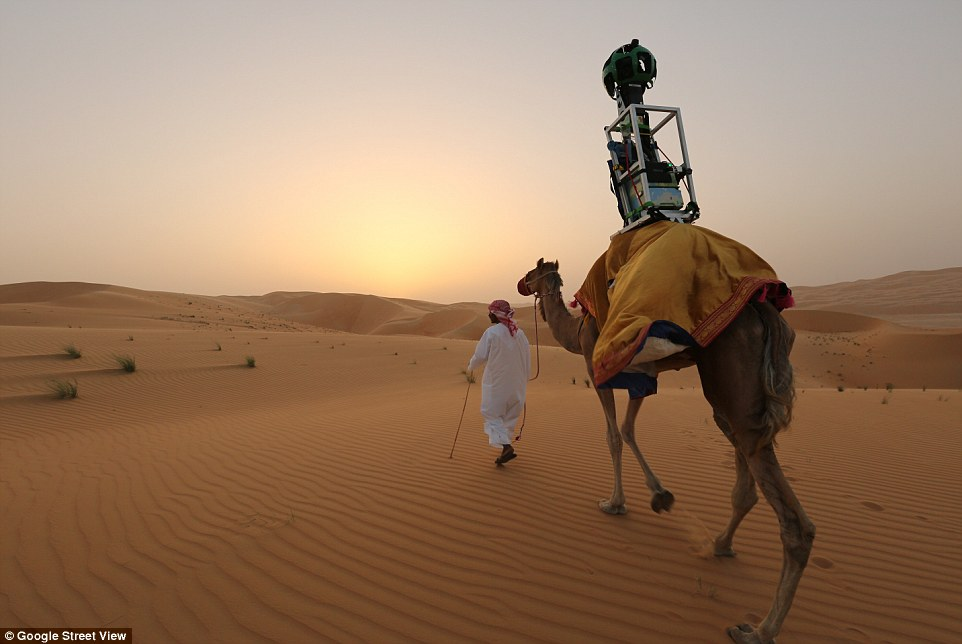 Image result for google camel