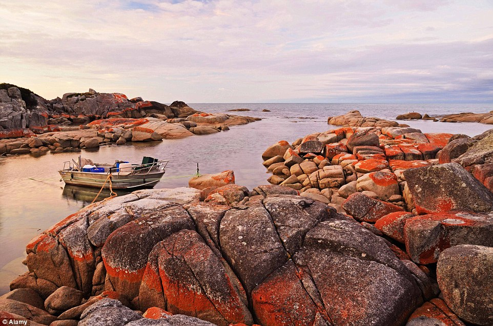 The Bay of Fires, in the Bay of Fires Conservation Areaon the northeastern coast of Tasmania, is a beauitful region of white beaches, blue water and orange-hued granite