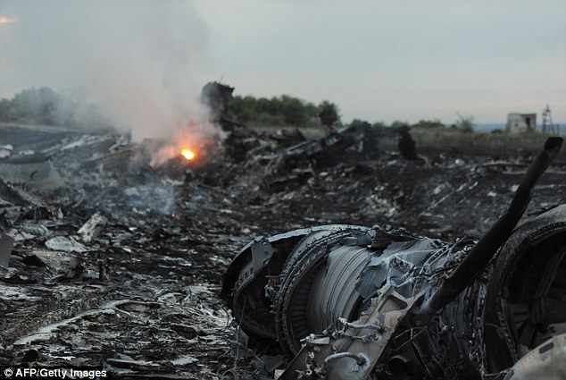 The burning wreckage of the passenger flight after it crashed near the town of Shaktarsk, in rebel-held east Ukraine