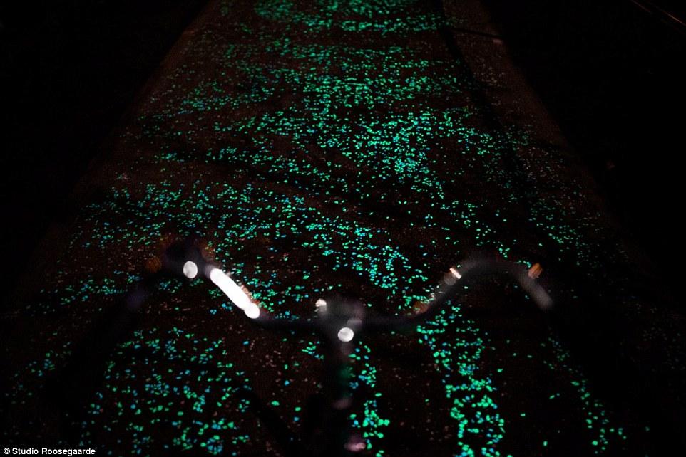 Outdoor Solar Path Lights