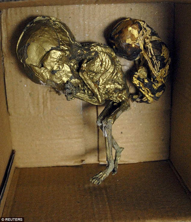 In 2012, a British citizen was arrested with six roasted foetuses covered in gold leaf