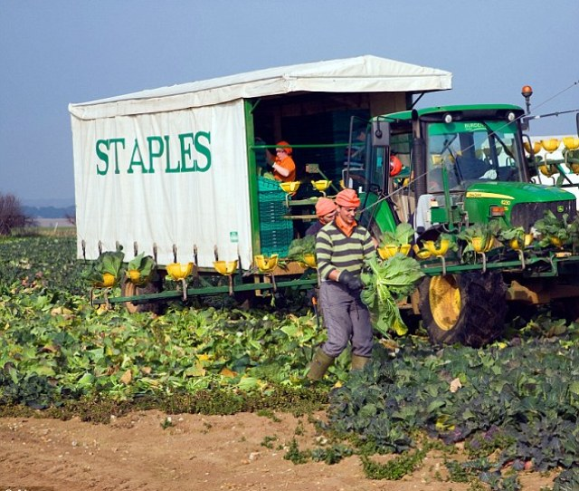 Staples Is Planning To Extend On Site Accommodation In Boston Lincolnshire Pictured