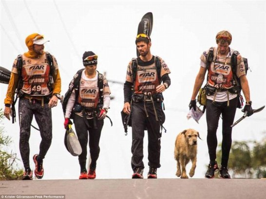 The fifth member: Team Peak Performance walk with stray dog Arthur during a stage of the 430-mileAdventure Racing World Championship. He followed the group of four during the grueling race
