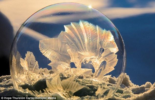 Formas: Los patrones increíbles en las burbujas se forman cristales de hielo que se distribuyen en sus superficies