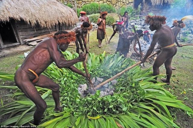 tradisi bakar batu di papua