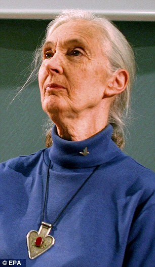Dame Jane Goodall has condemned politicians for pushing 'Frankenstein Food'