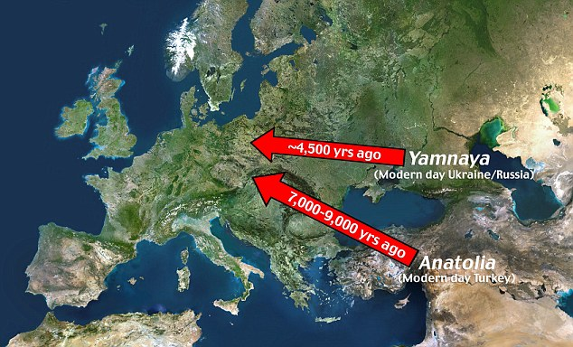 Previous research has identified a mass migration of Kurgan populations (Yamna culture) which went from the Russian steppes to the centre of Europe 4,500 years ago. Previously, researchers had believed it spread 8,500 years ago, when the first farmers from the Near East, now modern day Turkey, brought it to Europe