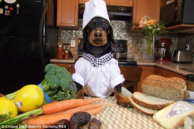 Chef Crusoe