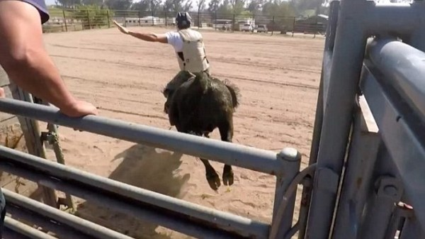 Scott Eastwood shows off his real-life bull riding skills ...